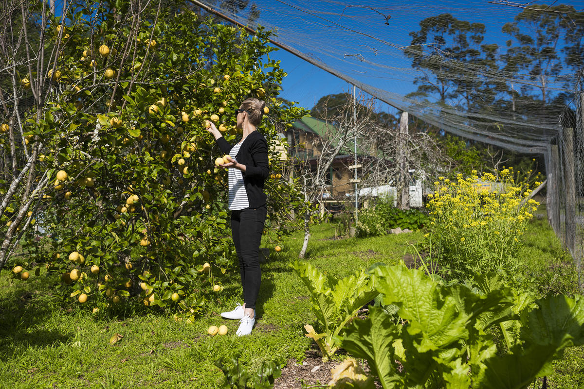 eco-friendly accommodation