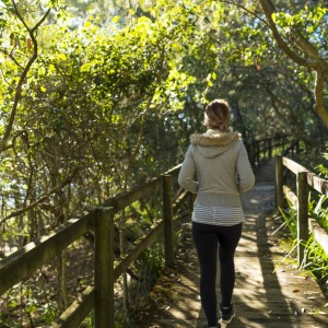 narrawallee-creek-studio-walks-activities